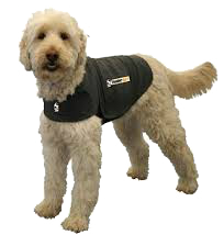 /Problemloesning/ThunderShirt.png